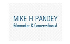 Mike H Pandey